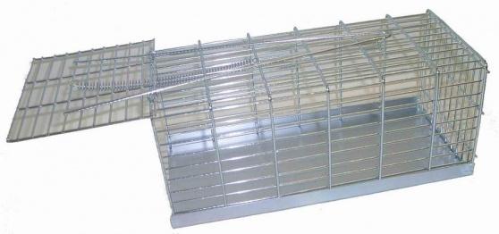 Pasca na potkany 20 cm Picollo 10545