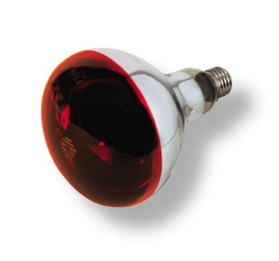 Žiarovka Infra 250W červená 1650
