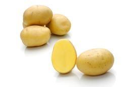 Sadbové zemiaky DALI, PRINCESS, ANABELLE 10kg 2182
